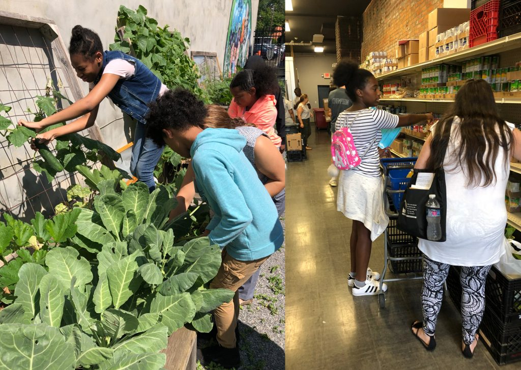 During their time at Arm in Arm, our CSL camp scholars picked fresh vegetables and assisted shoppers who needed assistance with groceries.