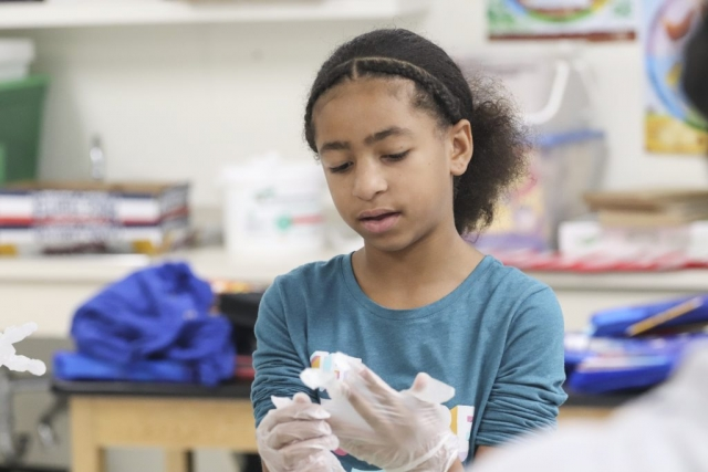 A student puts on sanitary gloves. Part of Culinary Club is learning about cleanliness and food safety.